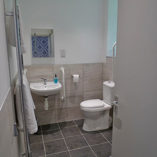 wheelchair accessible bathroom 2